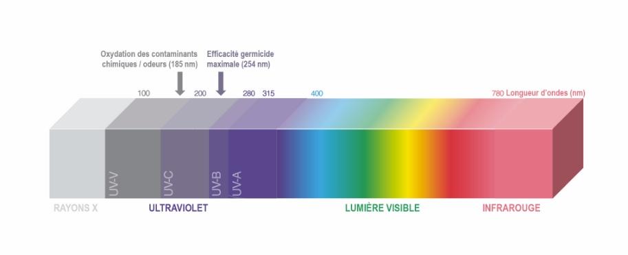 ultra-violet-image